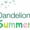 Dandelion Time Summer Fair - June 2019