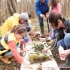 Nature, Craft and Family Systems Certificate Course: Taster Sessions