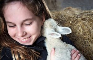 girl and lamb for website