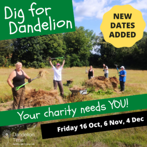 Volunteer at Dandelion – New Dates Added
